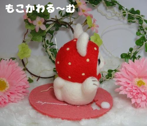苺まねき白猫2