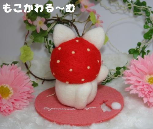 苺まねき白猫3