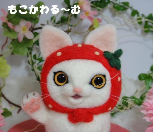 苺まねき白猫4