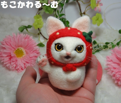 苺まねき白猫5