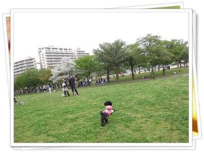 ☆彡12100418 200
