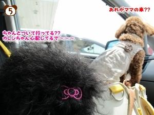 100508有馬富士公園14