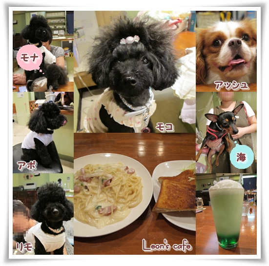 100814Leons cafe☆彡