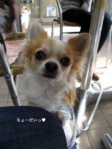 100208wataru2.jpg