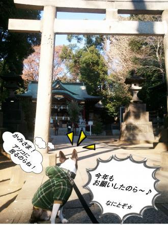 pol繝シhikawa1_convert_20120122044006