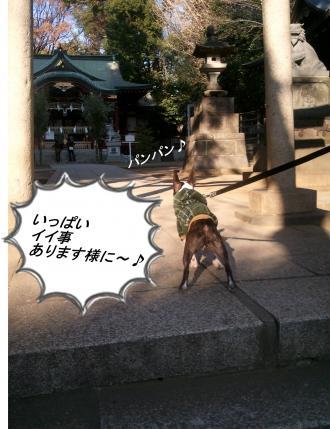 pol繝シhikawa2_convert_20120122043935