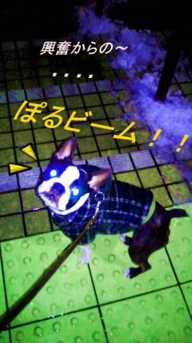 polyuki5_convert_20120128003224.jpg