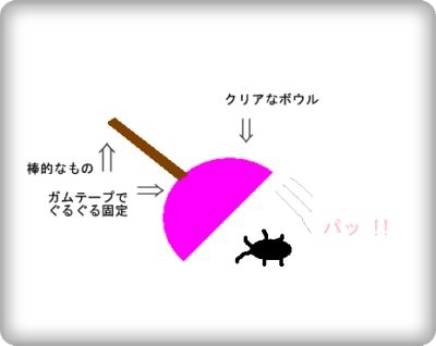 1_20100723025319.jpg
