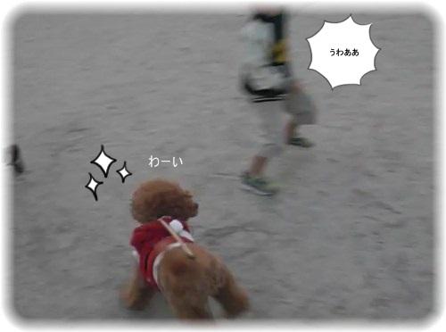 _hiroba3.jpg