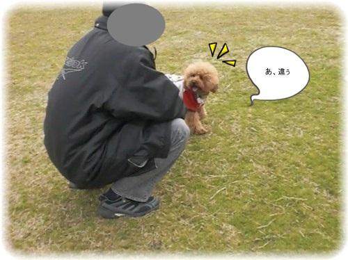 uminaka4_20110123213942.jpg