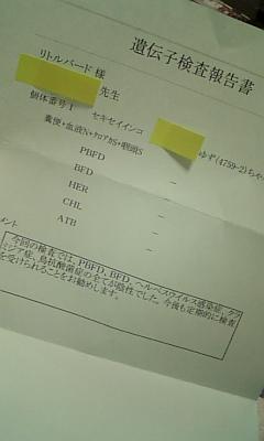 110222_143206.jpg