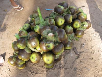 パームフルーツ