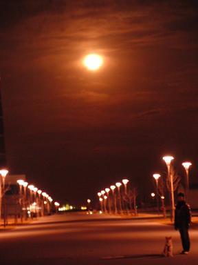 月ともも。