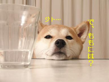 ジト目やめて~!