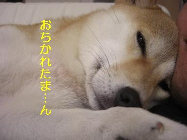 おちかれ0210