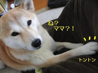 え~ッ?!