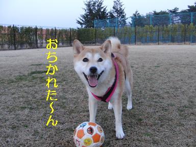 おちかれ0325