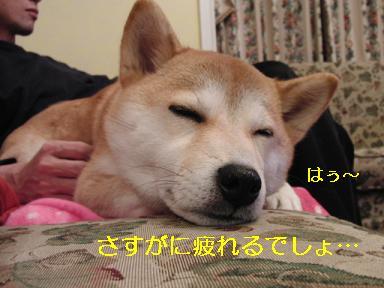 お疲れ様!