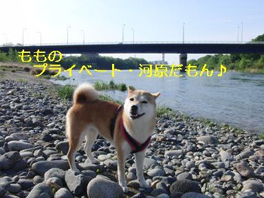 プ、プライベート河原~?