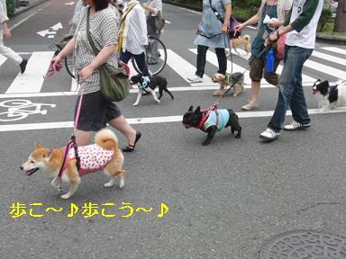 みんなで歩こう♪