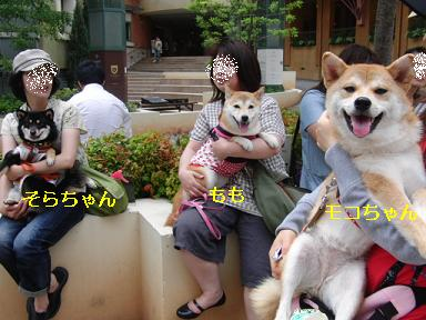 3柴女子!