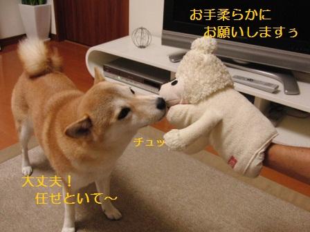優しく遊んでね!