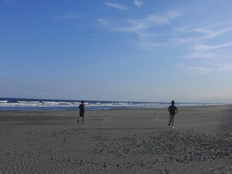 そこは海!