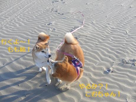 浜辺での戦い!