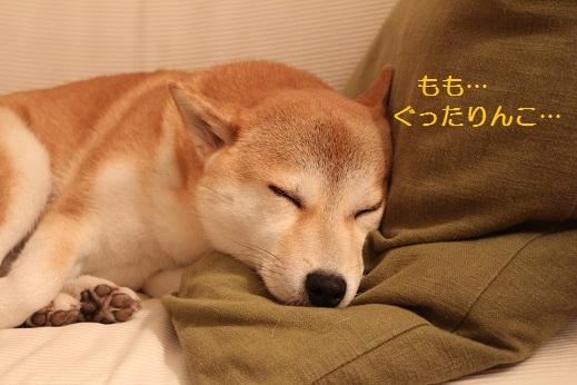 お疲れ様でした!