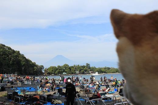 ダイバーさん越しの富士山。。