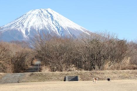 富士山とふたり