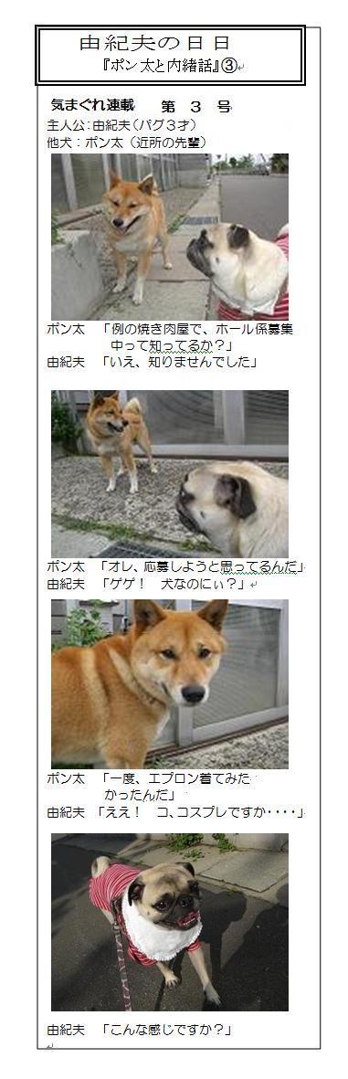 yu-hibi03.jpg