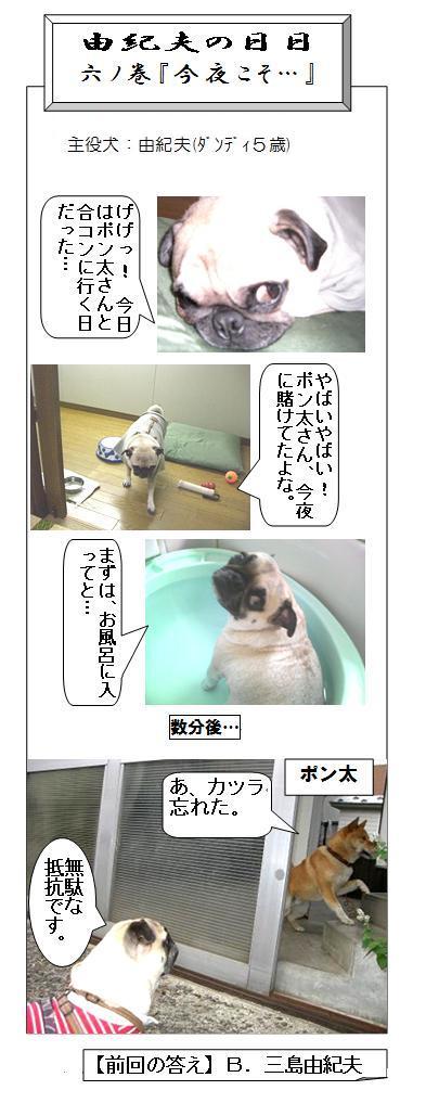 yu-hibi12.jpg