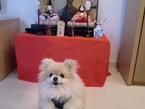 PICT0009_20120306142338.jpg