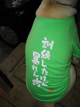 ぼくのためのシャツ
