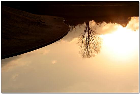 IMG_200912085.jpg