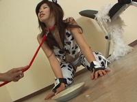 【無修正】牛柄のエロ洋服の相川るいちゃんに白い汁を中出し