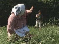 【無修正】野糞おばさん数十年振りのファック!