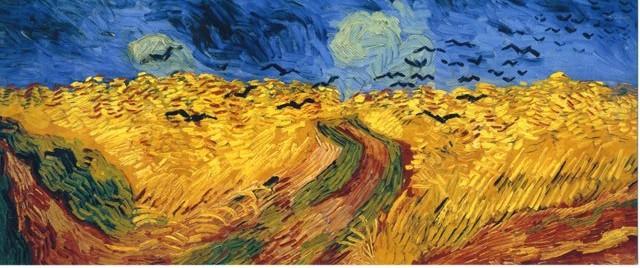 カラスの群れ飛ぶ麦畑