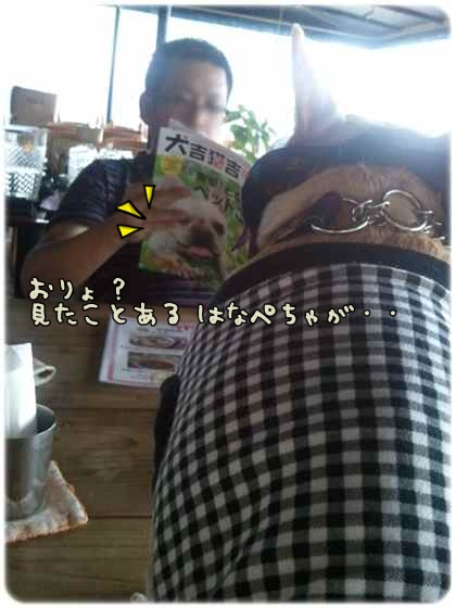 2011-07-16_15_55_30.jpg