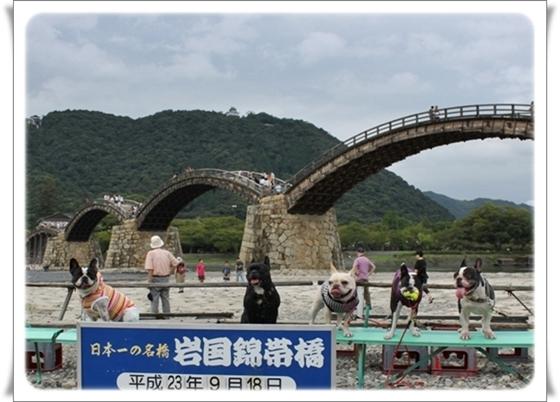 錦帯橋集合写真