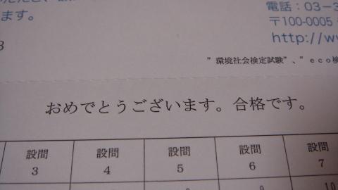 ネコピーポー (5)