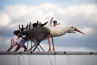 Birdman attempts