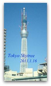 P1090051_20110116230221.jpg