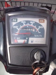 F1000066_20110421195052.jpg