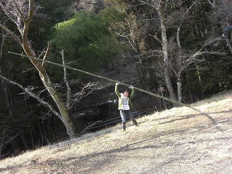 竹と 妖精