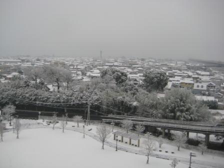 2010011502.jpg