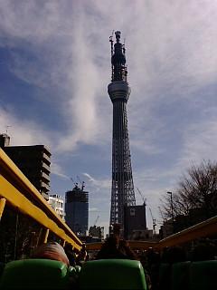 20110102115950.jpg