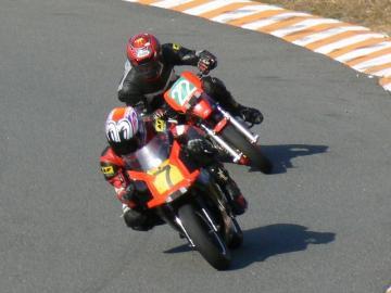 x-P1280975.jpg