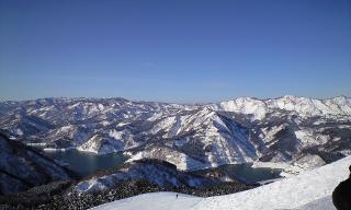 2010-1-27.jpg